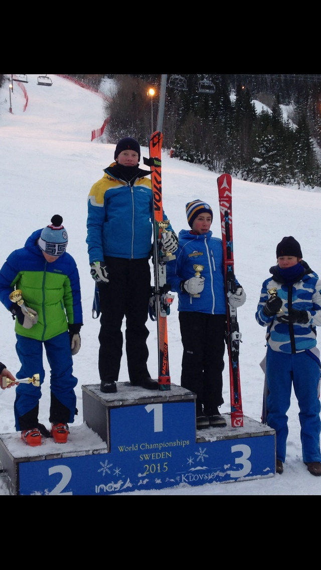 Skistar liftkort online dating